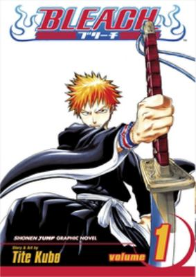 Bleach: Vol. 1, Strawberry and the soul reapers